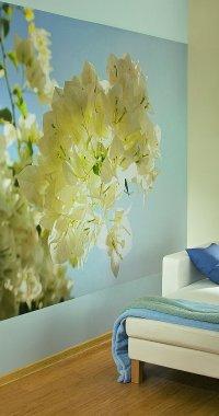 bedroom wallpaper